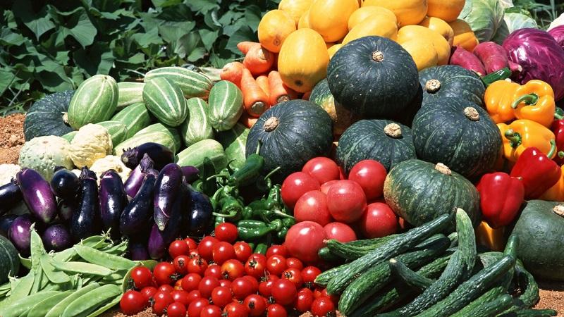 Ukraina ministrite kabinet võttis vastu köögiviljakasvatuse arendamise sihtprogrammi