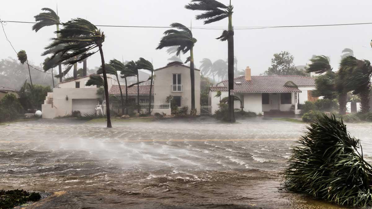 Orkaan Eta kahjustab ja viivitab eksporti Hondurasest ja Guatemalast