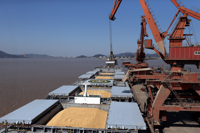 Ukrainian grain export declined by 16.9% in 2020-2021